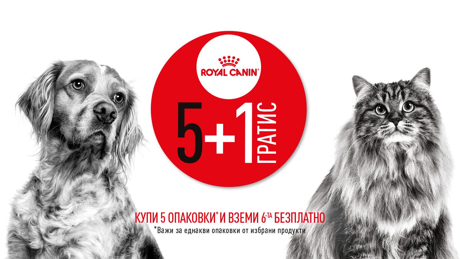 промоция Royal Canin